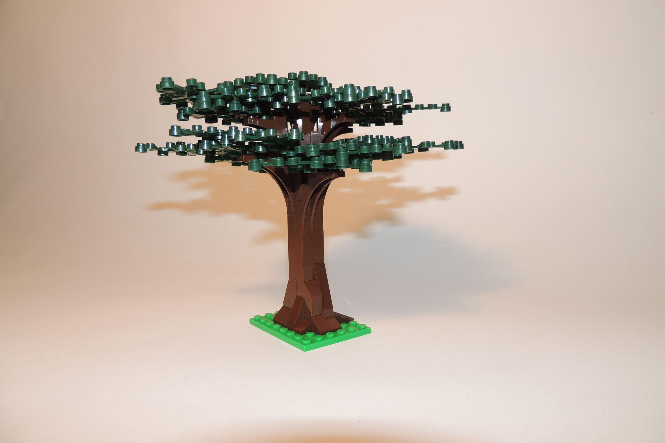 Ungetrübter Blick auf den Baum.